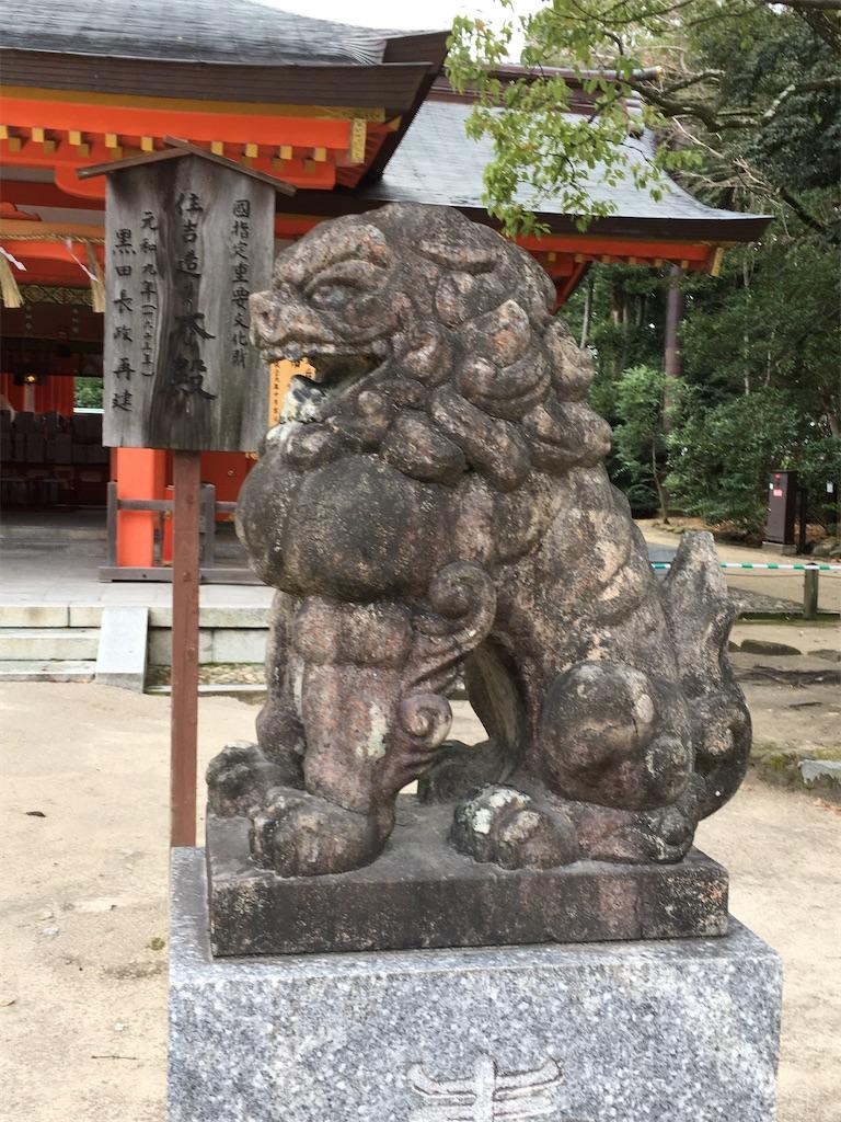 f:id:kosamebitaki733:20200111124630j:image