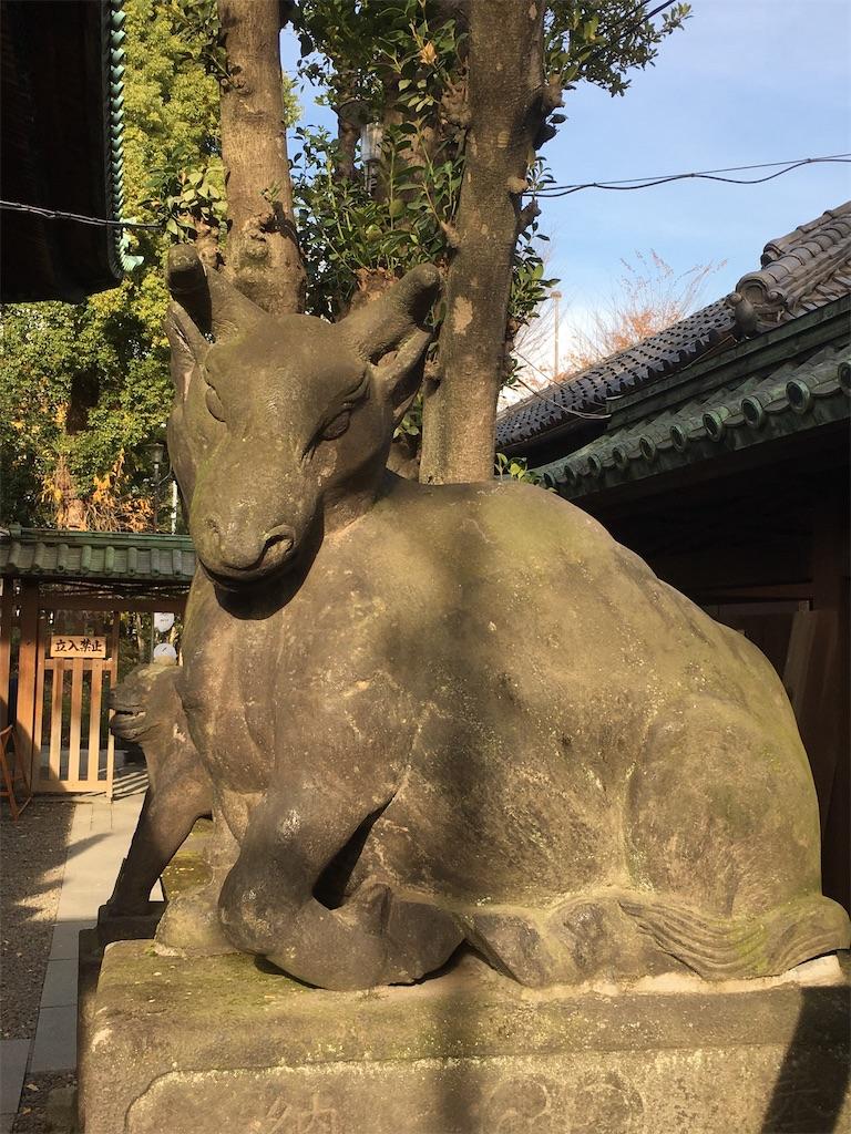 f:id:kosamebitaki733:20201220122705j:image
