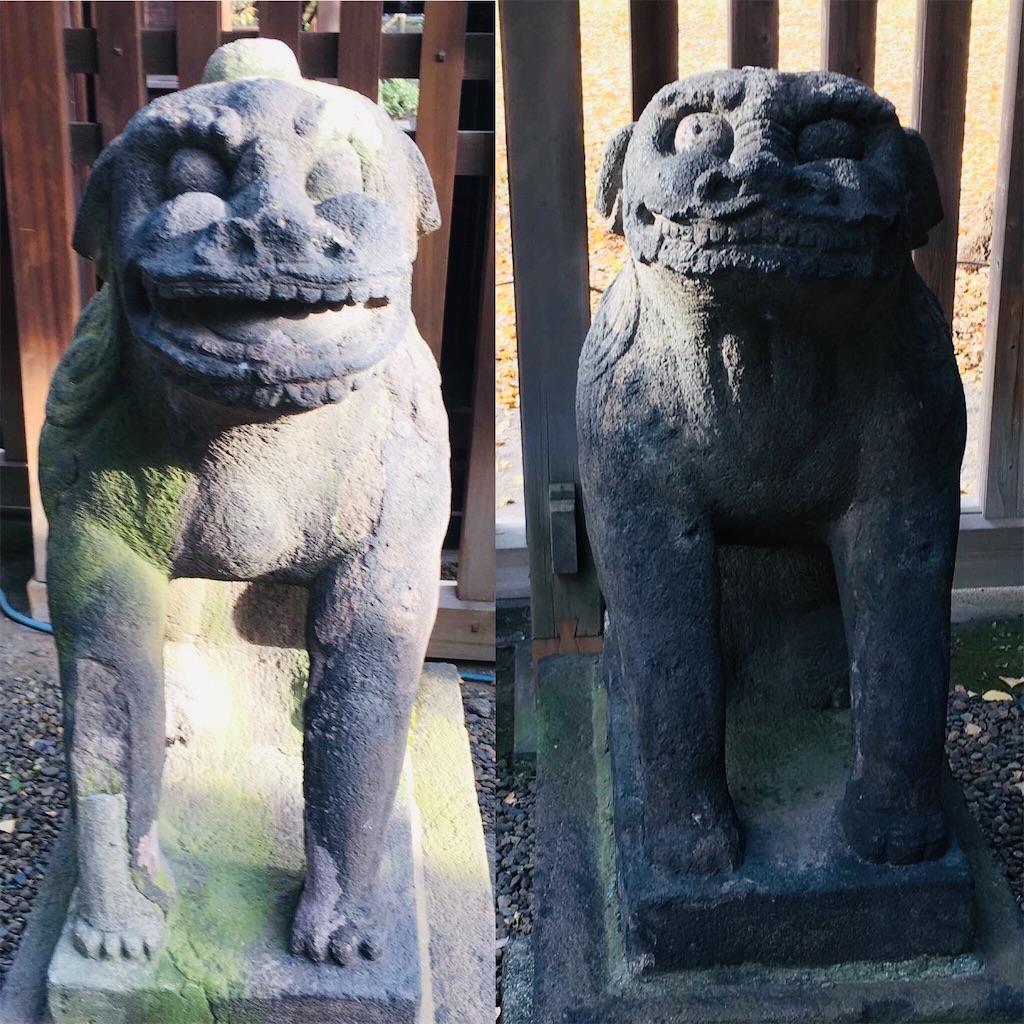 f:id:kosamebitaki733:20201220122721j:image