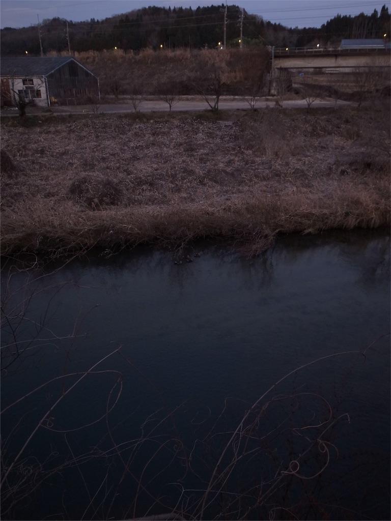 f:id:kosanikki:20200122184843j:image