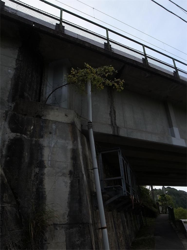 f:id:kosanikki:20201028180716j:image