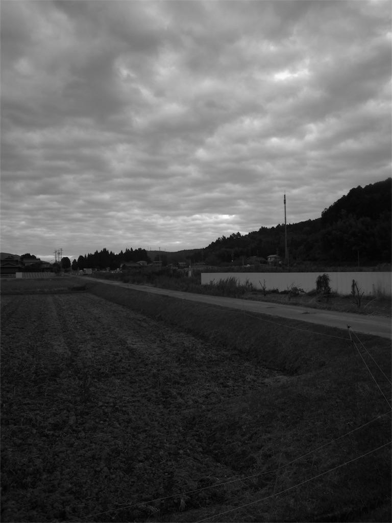 f:id:kosanikki:20201112183503j:image