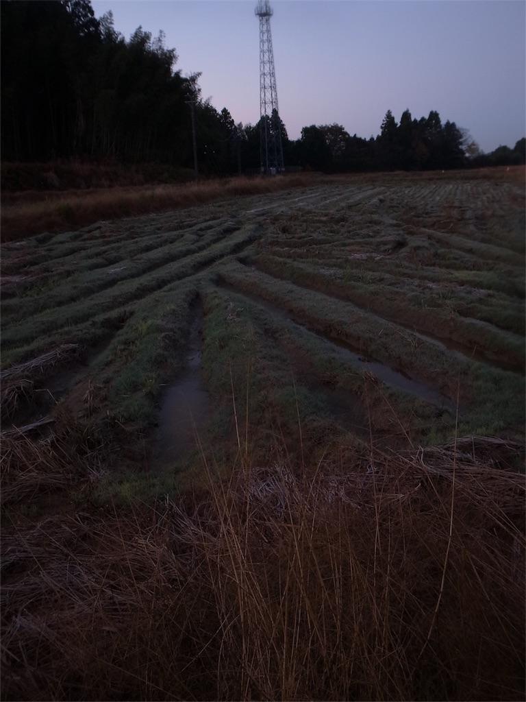 f:id:kosanikki:20201124205734j:image