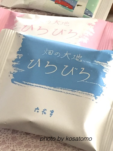 f:id:kosatomo:20170404210411j:plain