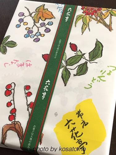 f:id:kosatomo:20170404210418j:plain