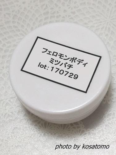 f:id:kosatomo:20170820094031j:plain
