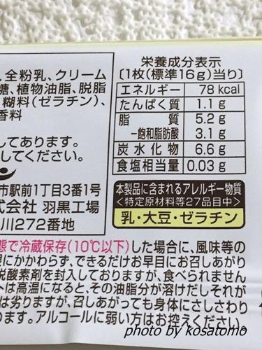 f:id:kosatomo:20171006101602j:plain