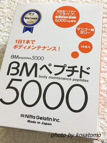 f:id:kosatomo:20171221104451j:plain