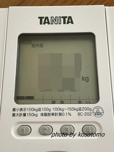 f:id:kosatomo:20180319103527j:plain