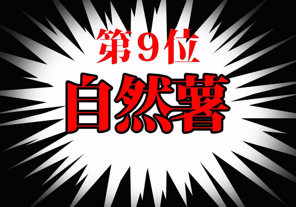 f:id:koseinousyuku:20160825112401j:plain