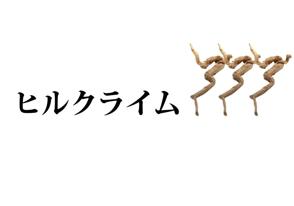 f:id:koseinousyuku:20160825112716j:plain