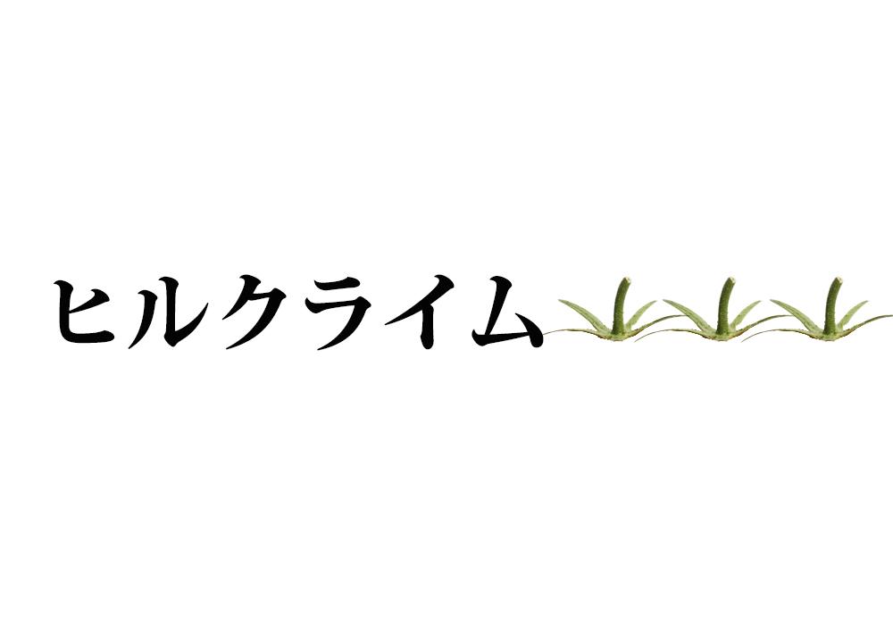 f:id:koseinousyuku:20160825115750j:plain