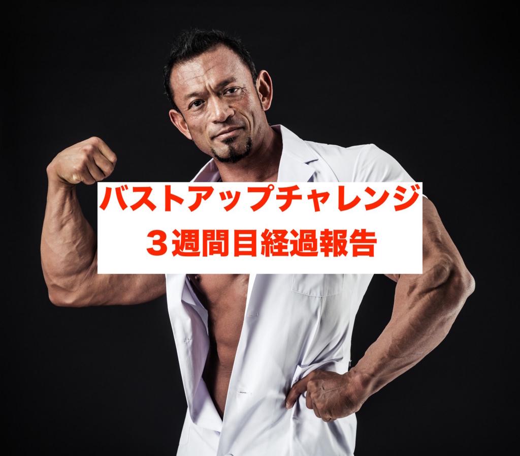 f:id:koshibu:20160728193325j:plain
