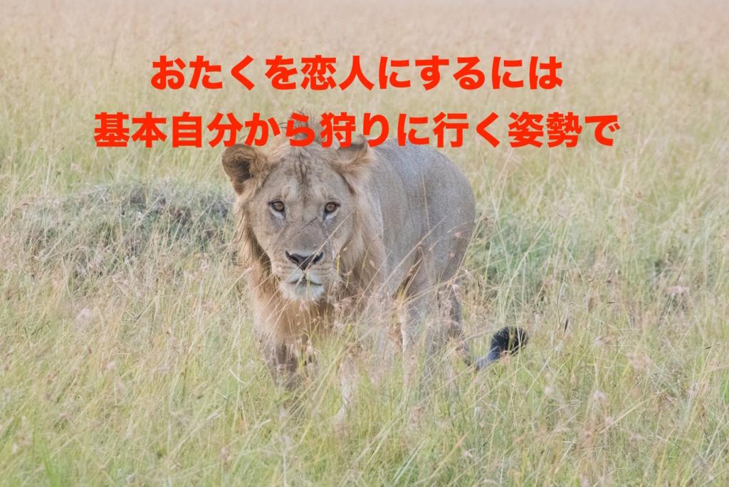 f:id:koshibu:20160804202805j:plain