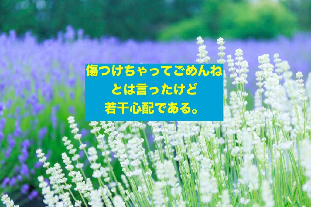 f:id:koshibu:20160825203651j:plain