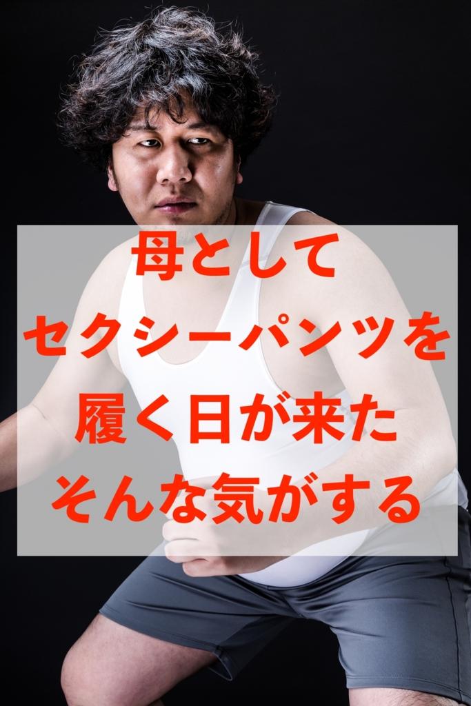 f:id:koshibu:20170125173443j:plain