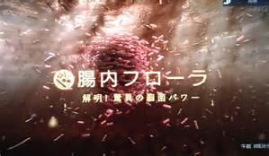 f:id:koshigayatasuki:20170411180334j:plain