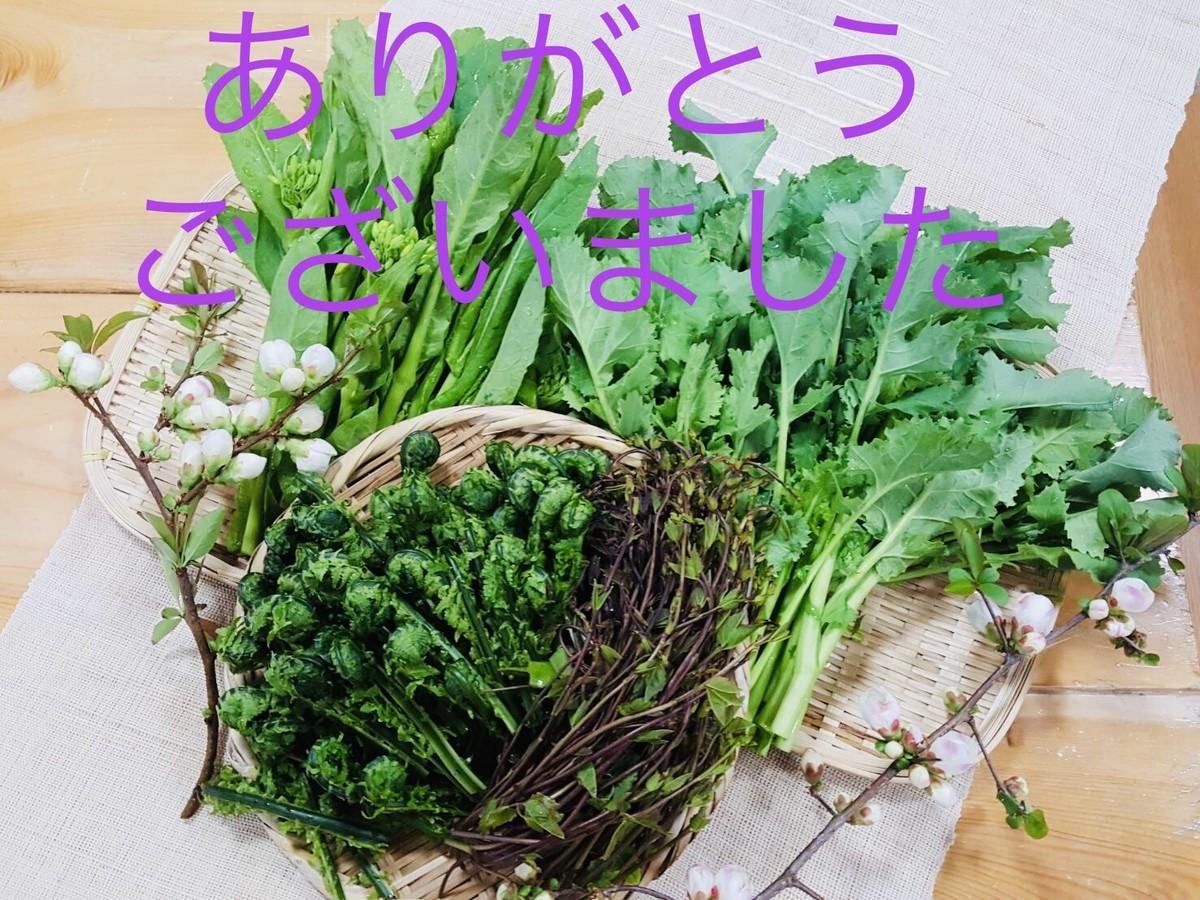 f:id:koshiji:20200516232607j:plain