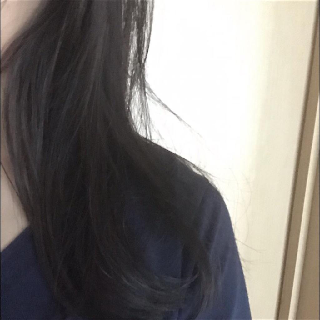 f:id:koshikakeol:20190712170708j:image