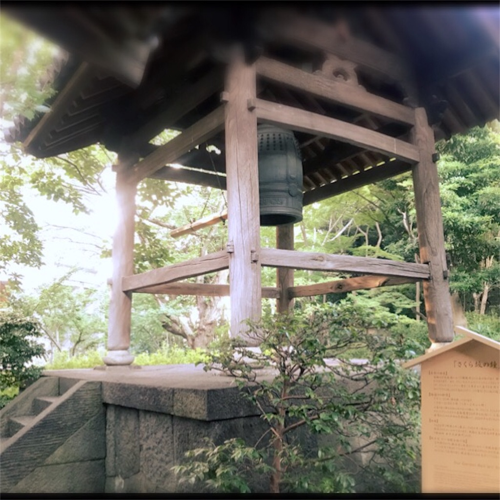 f:id:koshikakeol:20190804140023j:plain