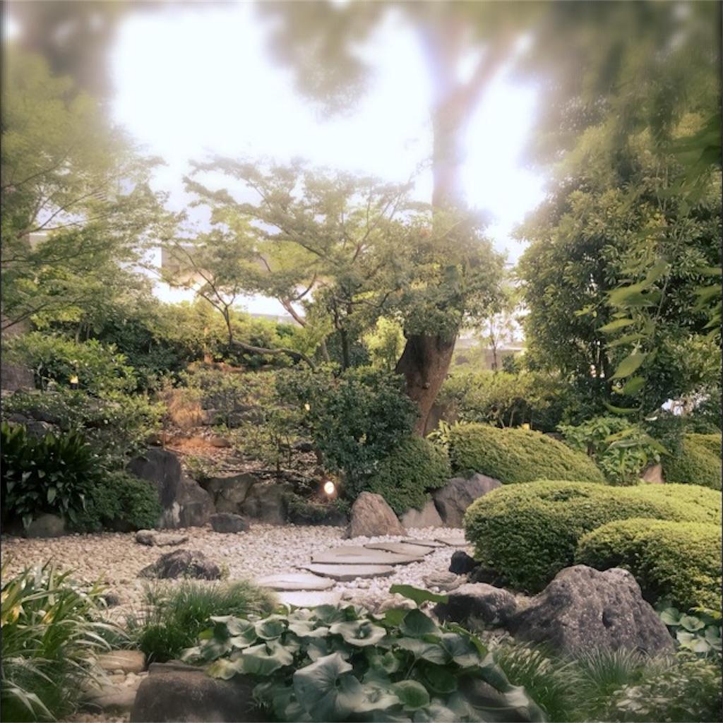f:id:koshikakeol:20190804140045j:image
