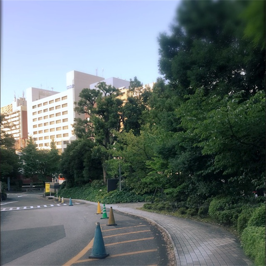 f:id:koshikakeol:20190804140228j:image