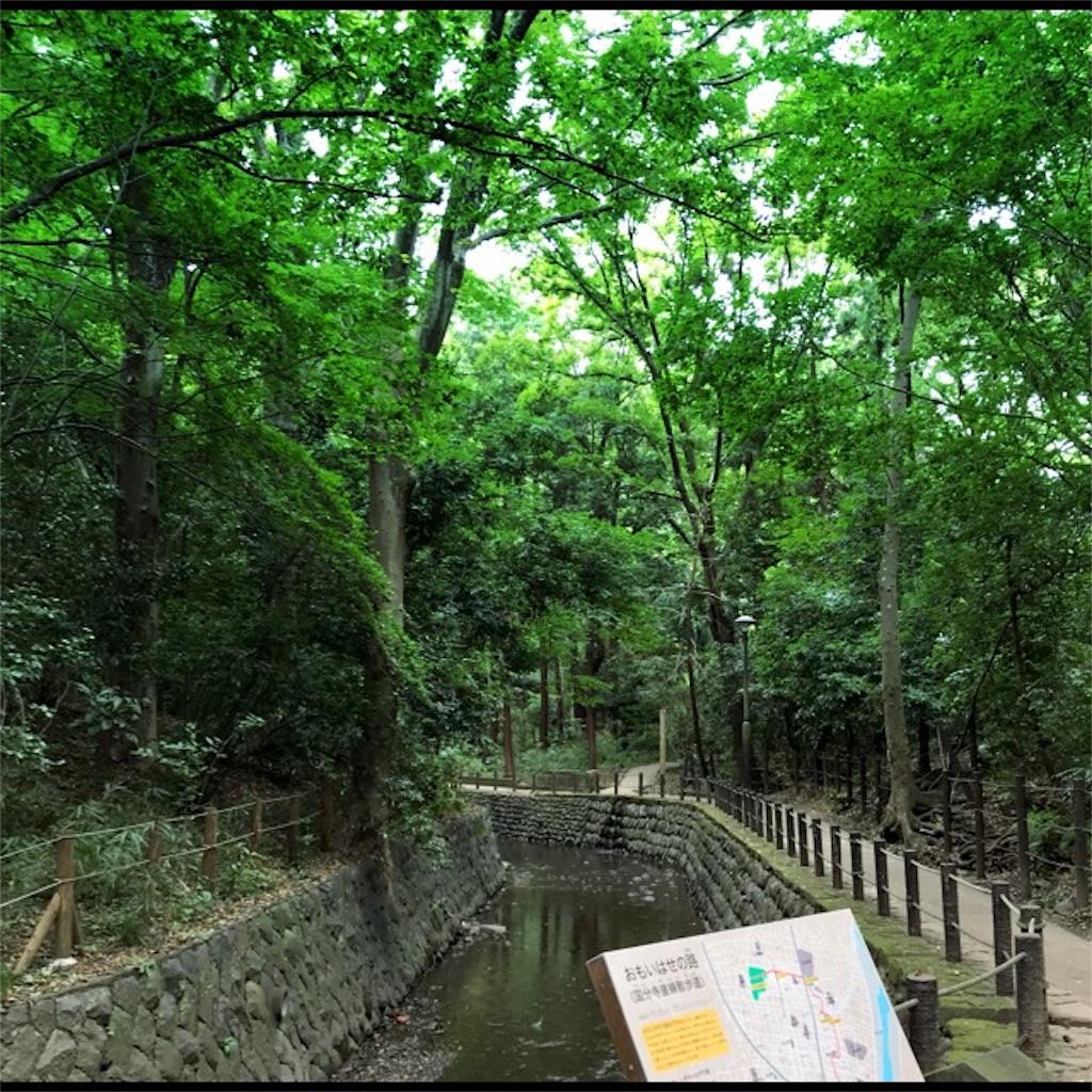 f:id:koshikakeol:20190914120322j:image