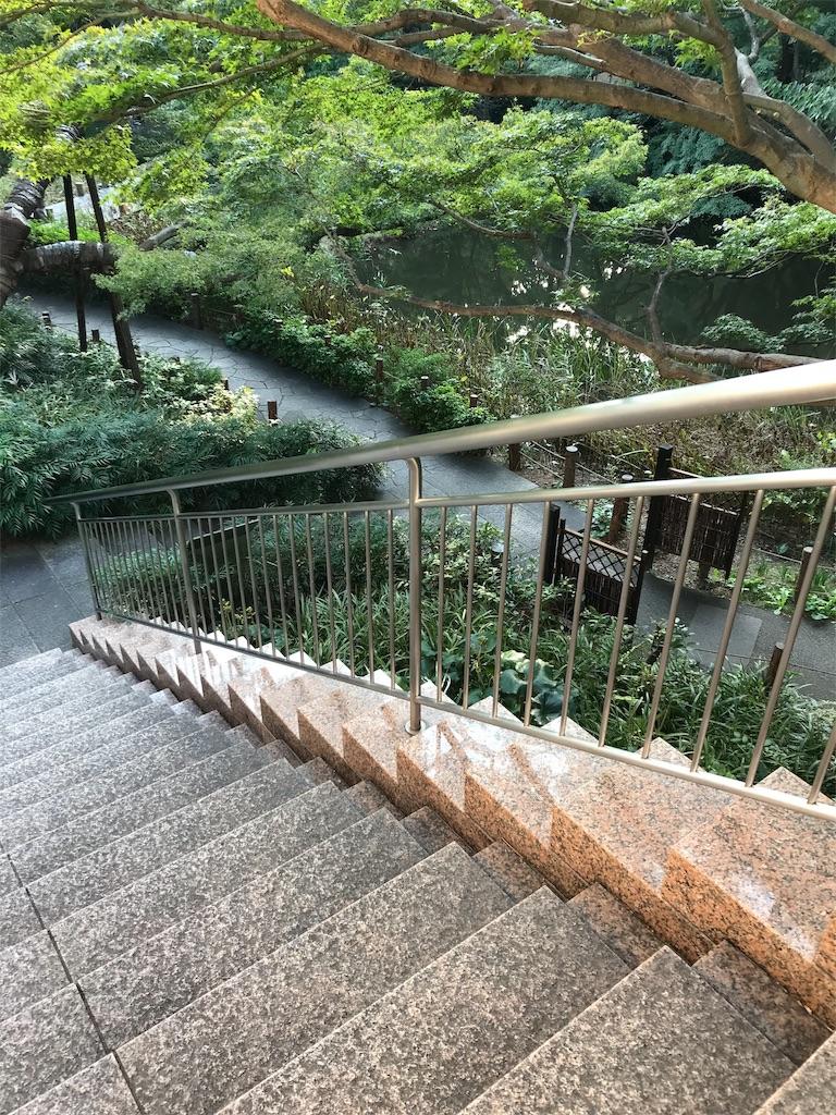 f:id:koshikakeol:20191104182926j:image