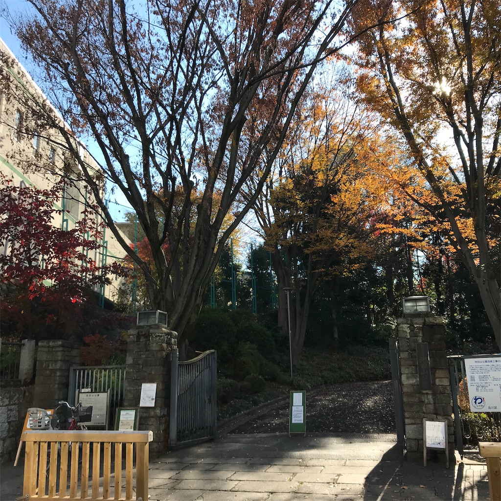 f:id:koshikakeol:20191208163018j:image