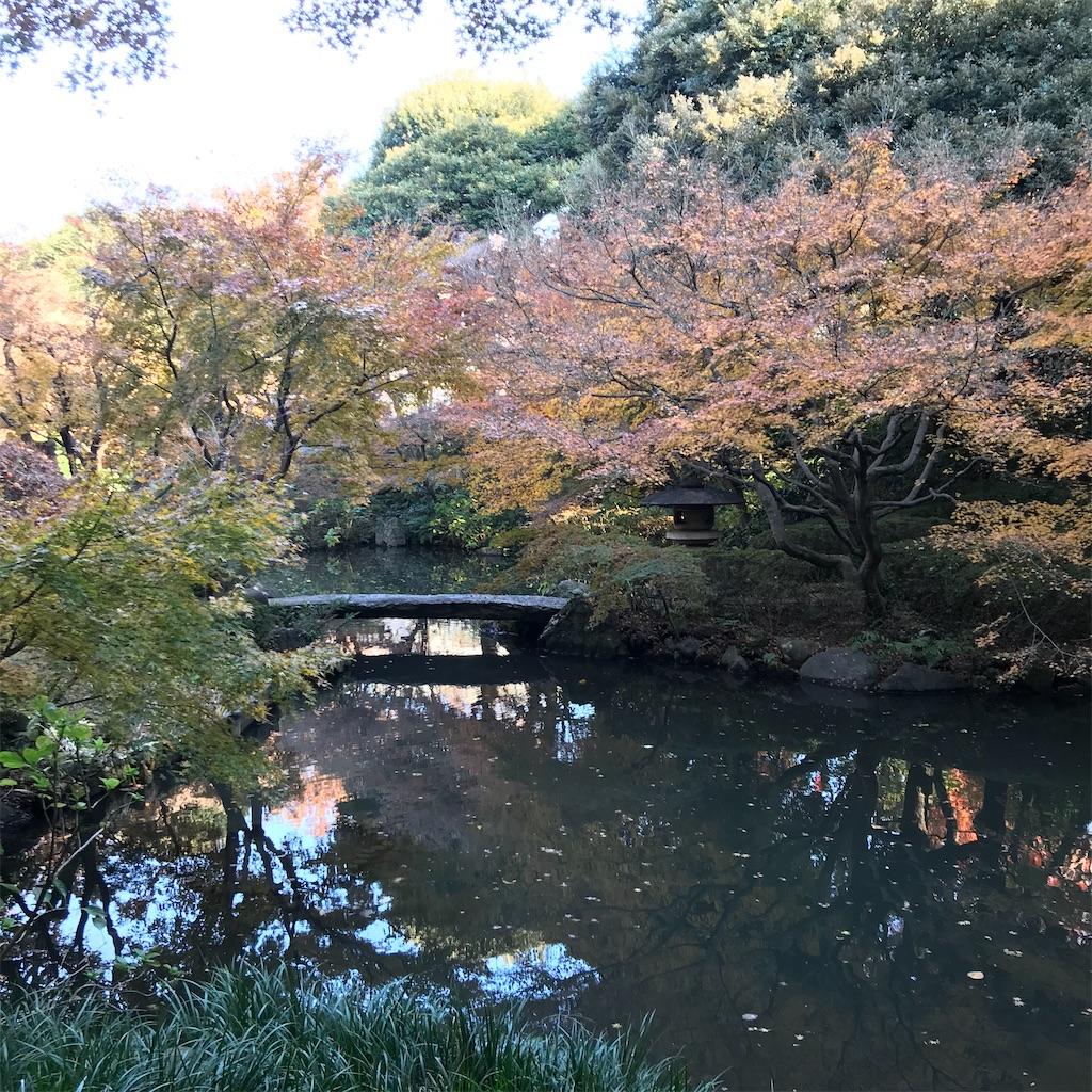 f:id:koshikakeol:20191208163419j:image