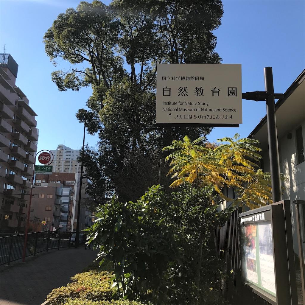 f:id:koshikakeol:20191208214028j:image