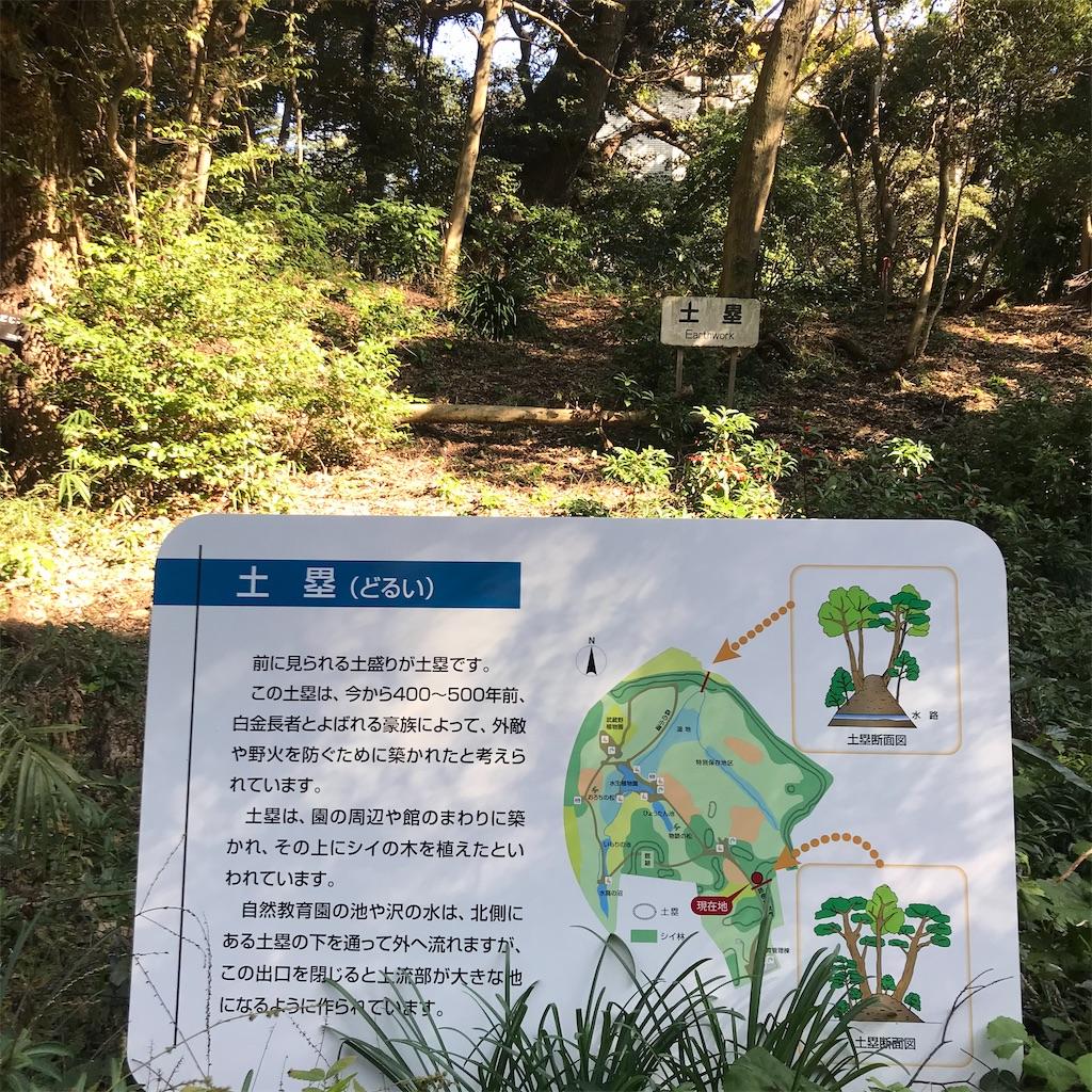 f:id:koshikakeol:20191208214432j:image