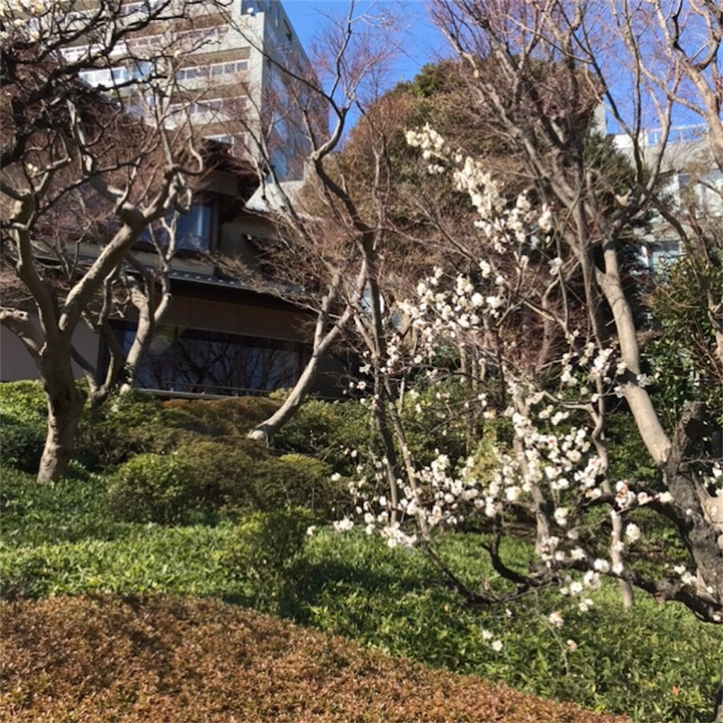 f:id:koshikakeol:20200211163727j:image