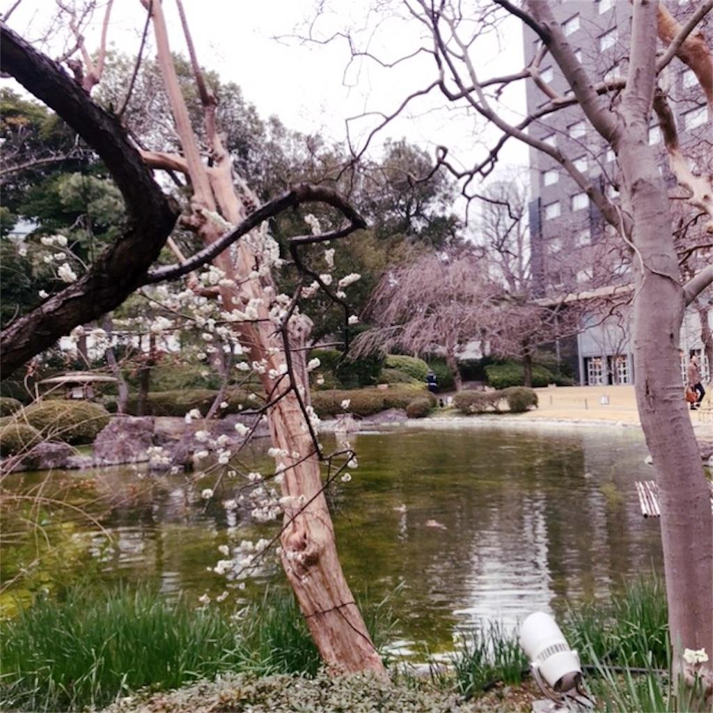 f:id:koshikakeol:20200218100755j:image