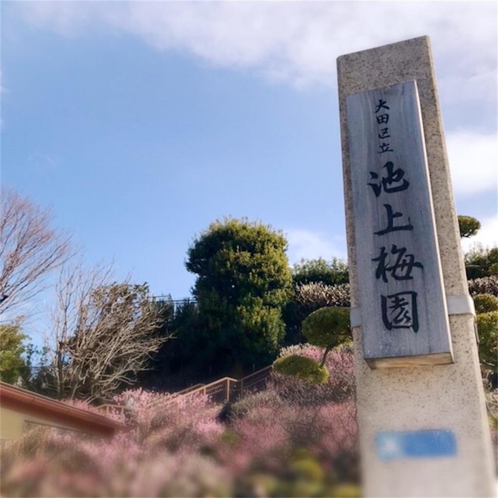 f:id:koshikakeol:20200224135835j:image