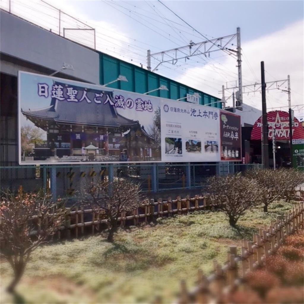 f:id:koshikakeol:20200224135848j:image