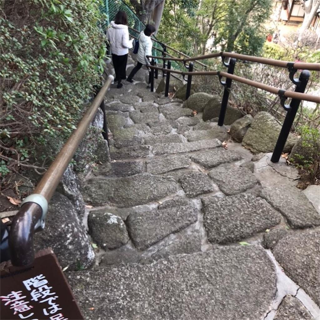 f:id:koshikakeol:20200224140317j:image