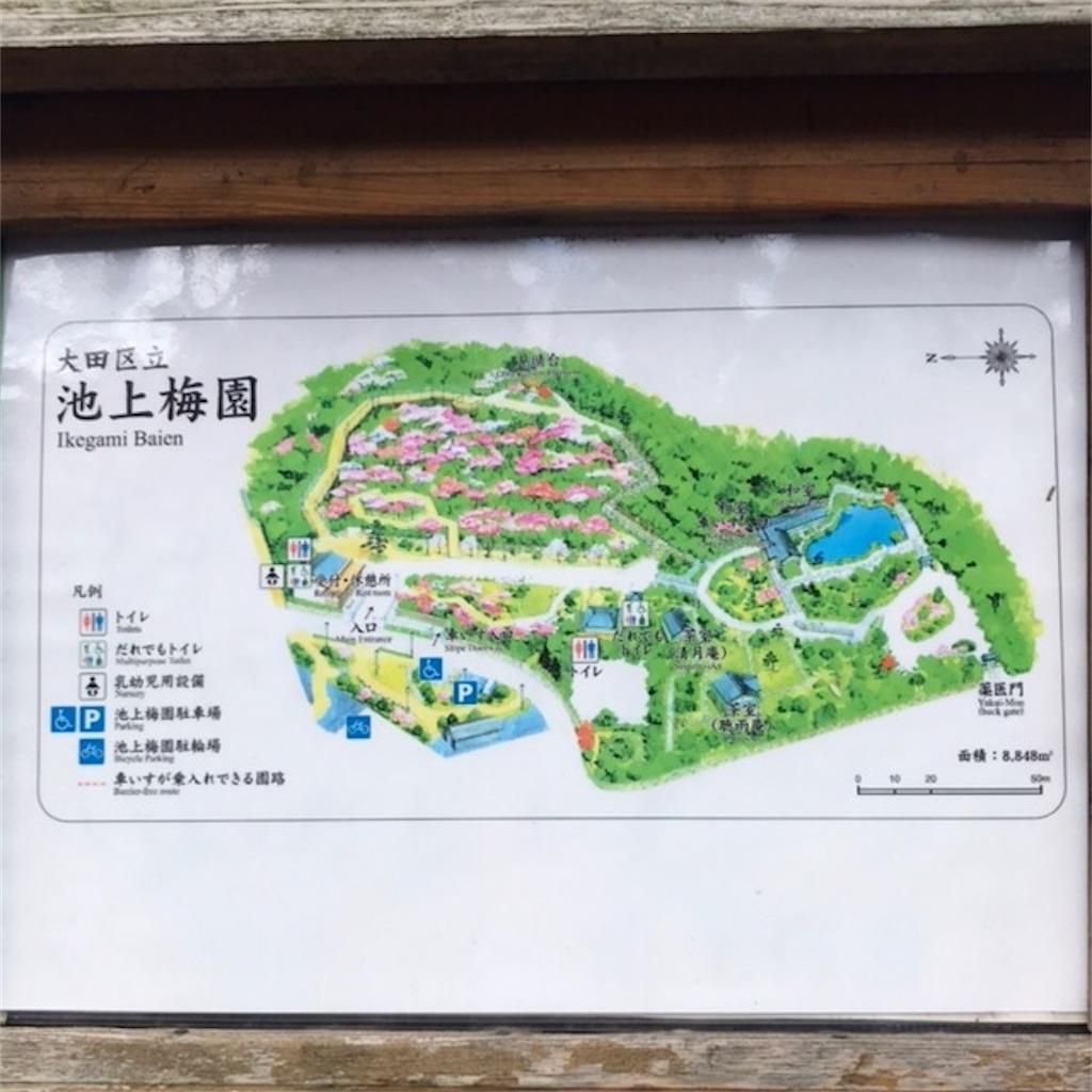f:id:koshikakeol:20200224140409j:image
