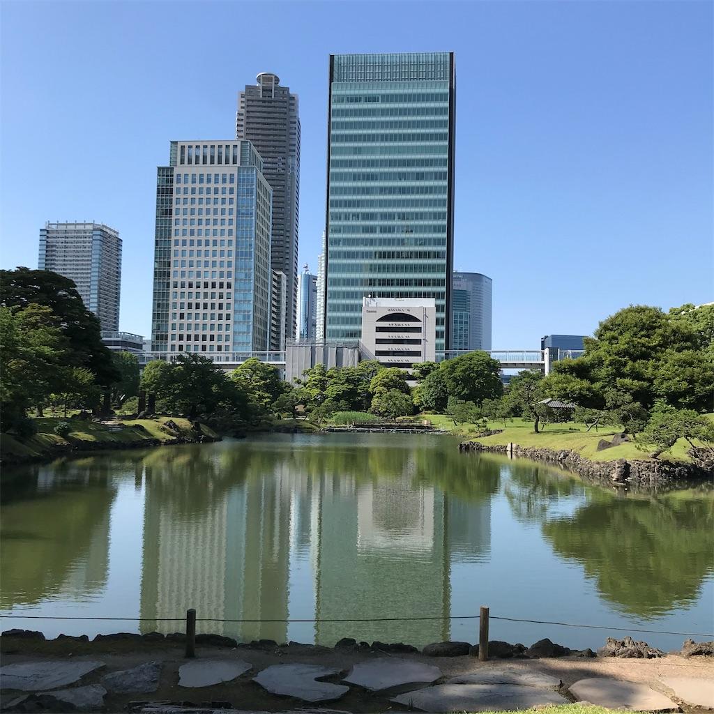 f:id:koshikakeol:20200610074938j:image