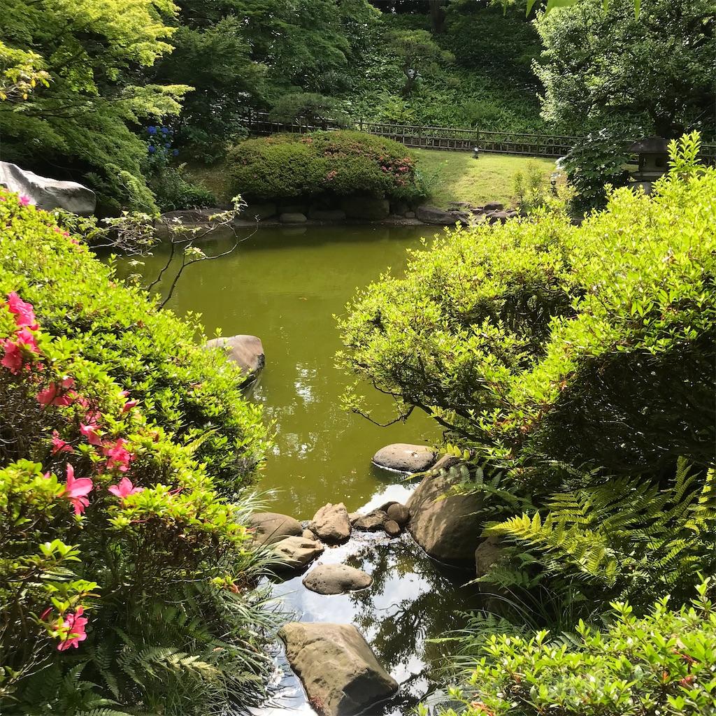 f:id:koshikakeol:20200613130021j:image