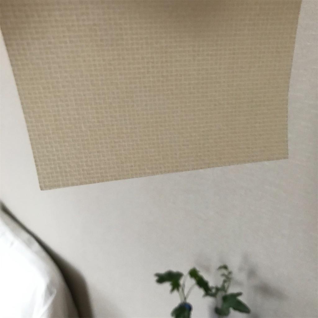 f:id:koshikakeol:20200622141216j:image