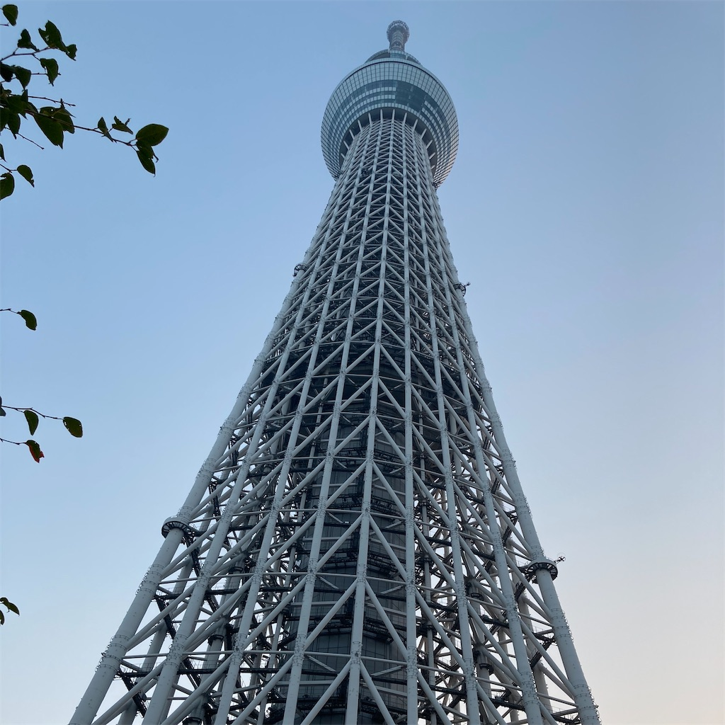 f:id:koshikakeol:20201006163411j:image