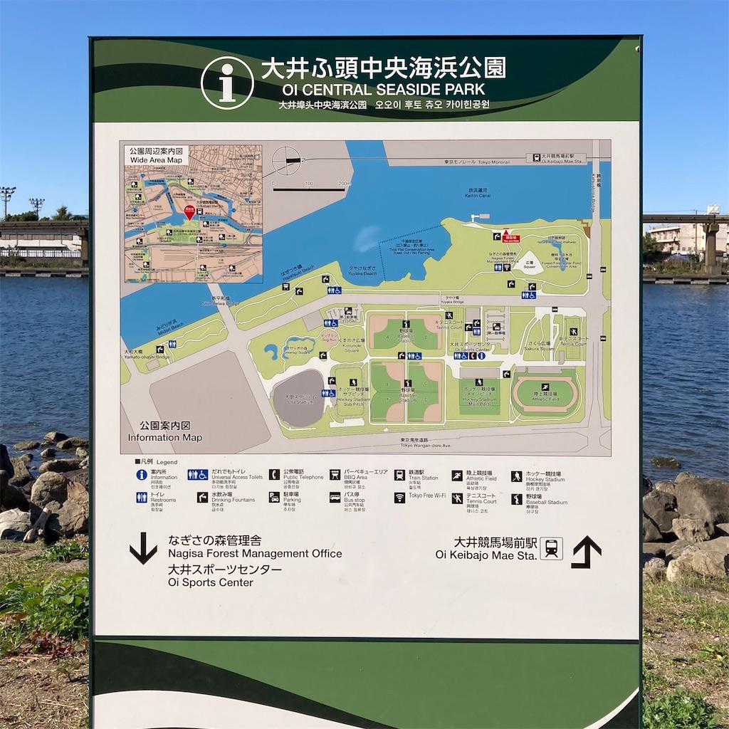 f:id:koshikakeol:20201111122139j:image