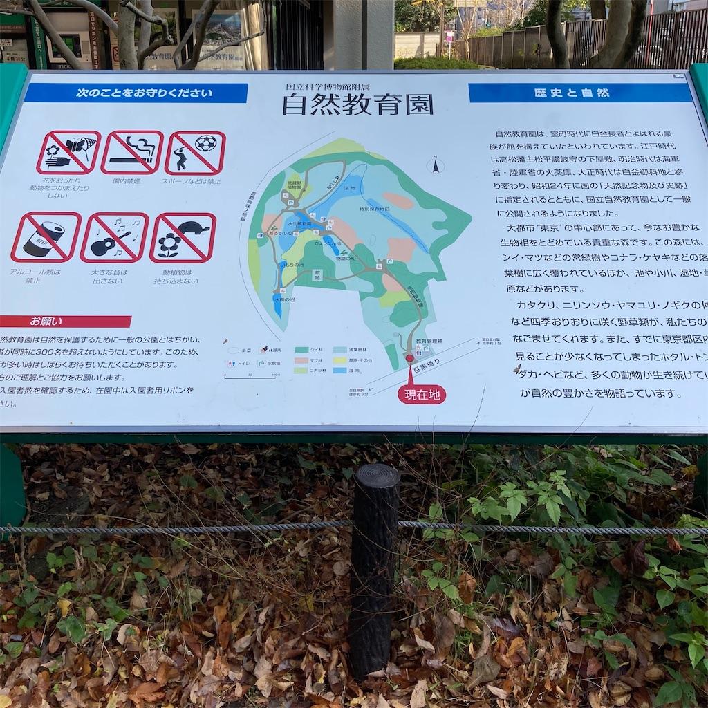 f:id:koshikakeol:20201126114620j:image