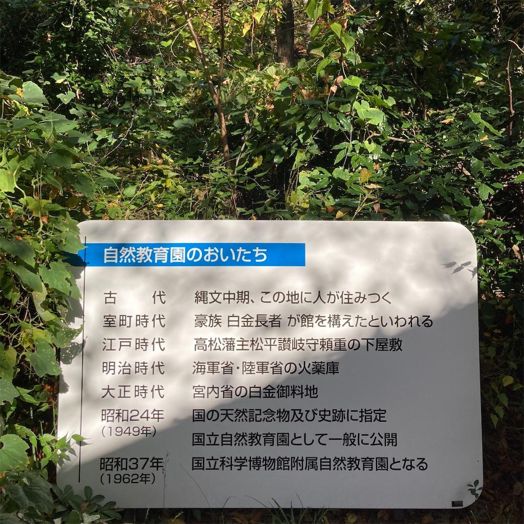 f:id:koshikakeol:20201126114721j:image