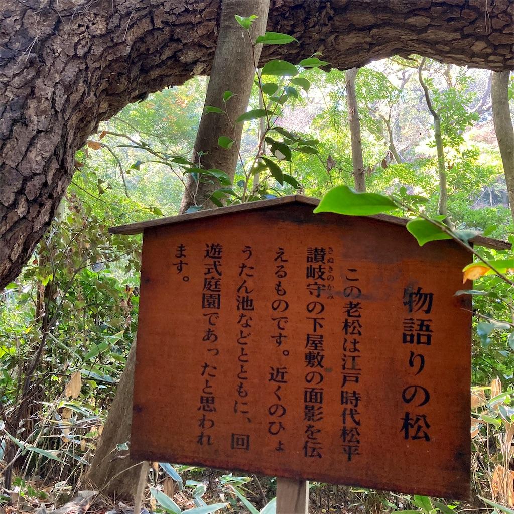 f:id:koshikakeol:20201126185518j:image