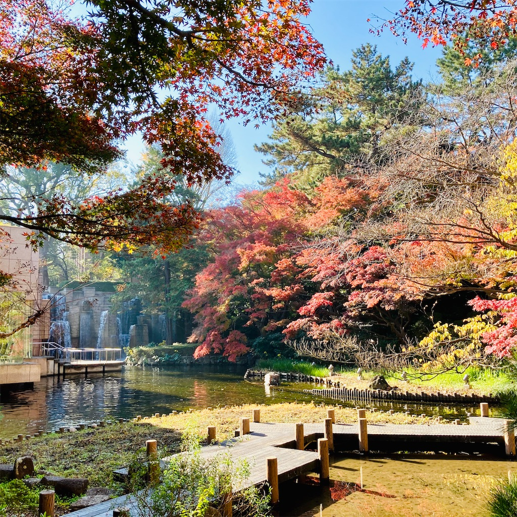 f:id:koshikakeol:20201207211802j:image