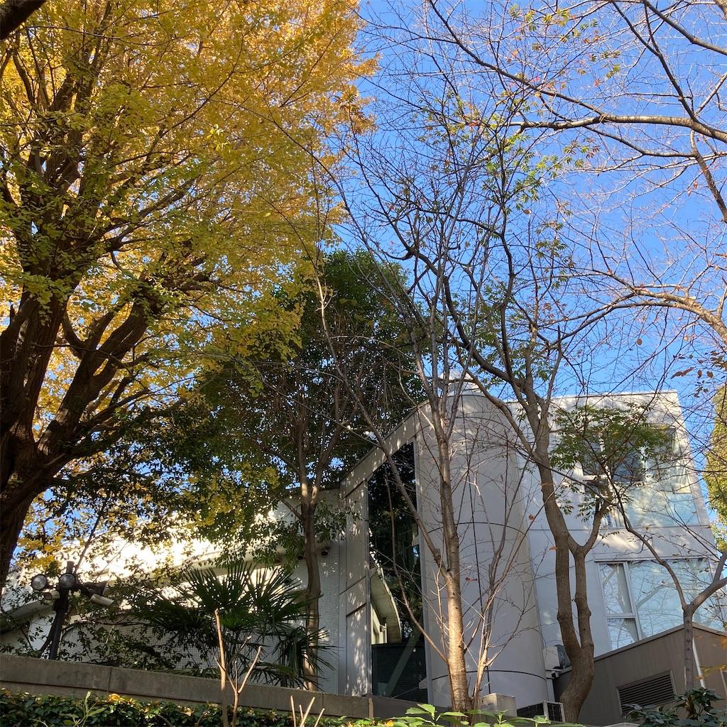 f:id:koshikakeol:20201207211826j:image