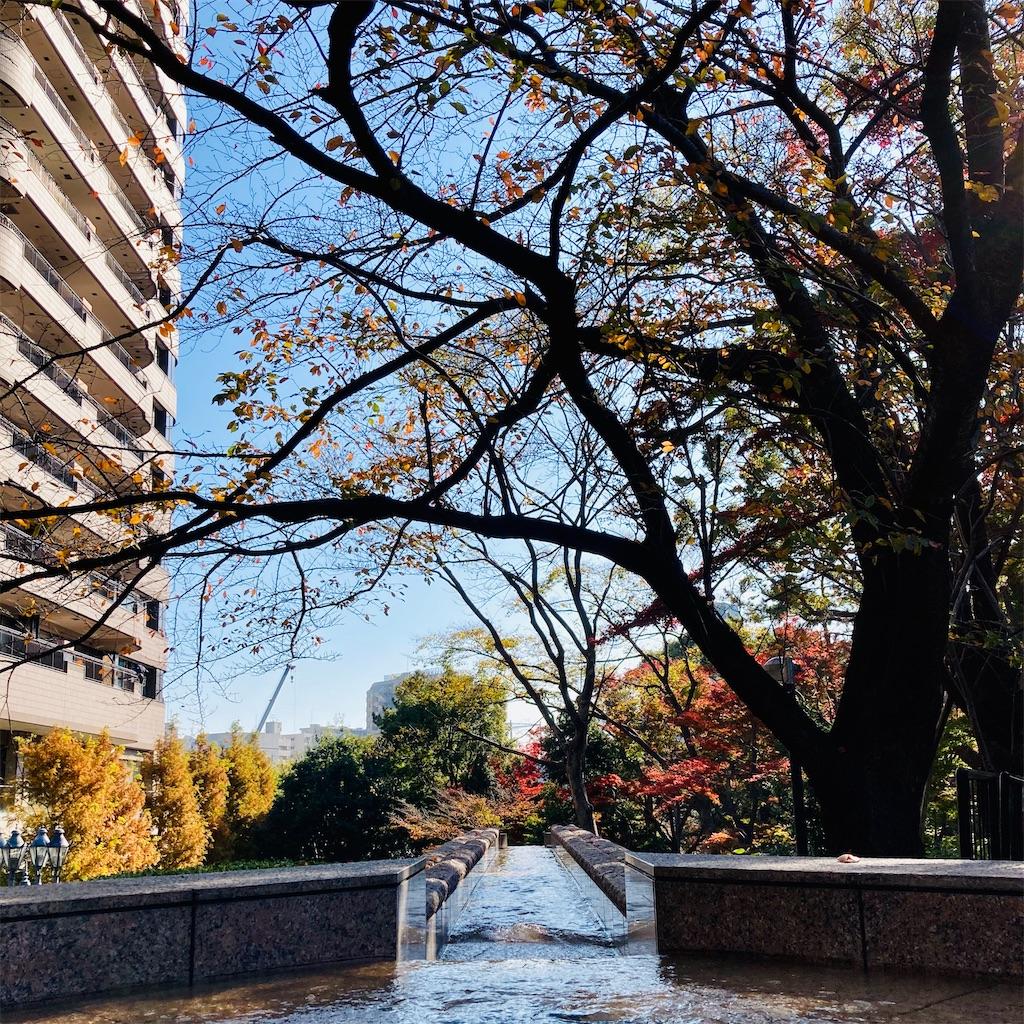 f:id:koshikakeol:20201207211911j:image