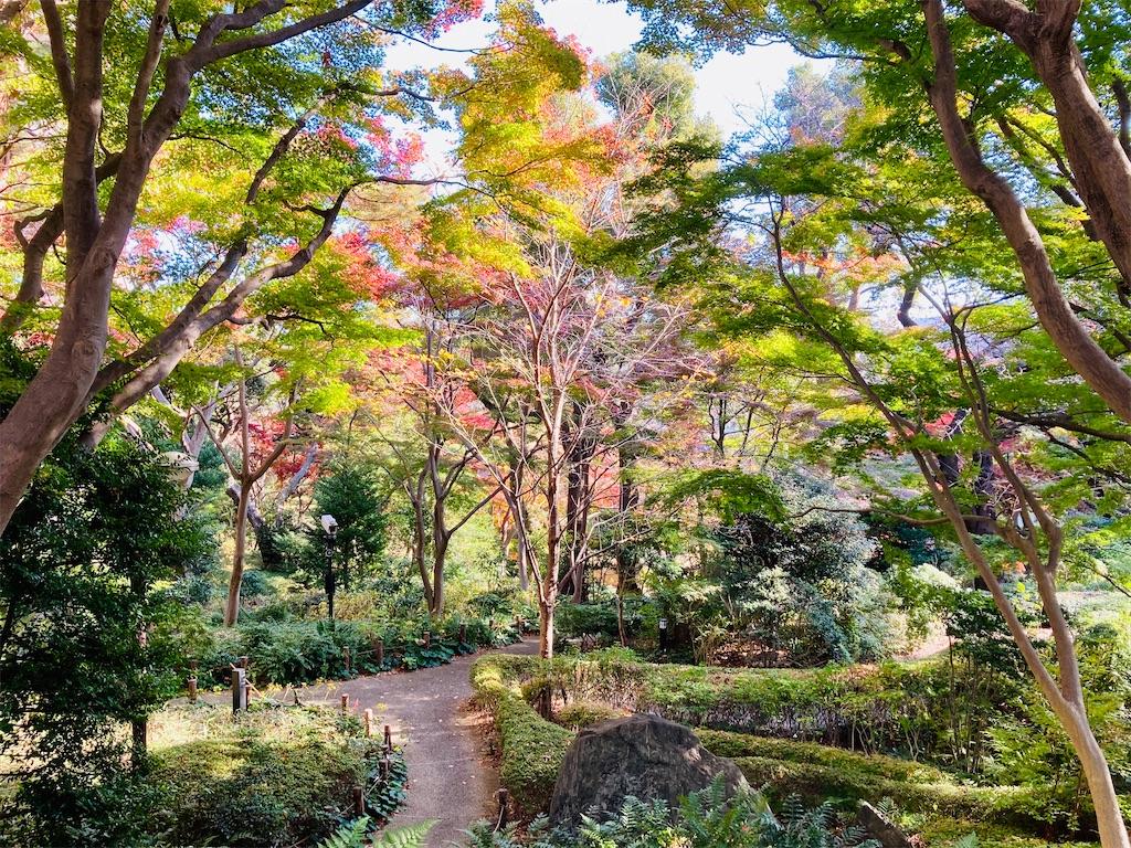 f:id:koshikakeol:20201207212259j:image
